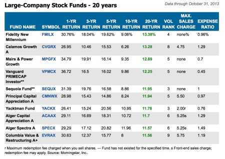 Large Company Stock Funds - 20 Years